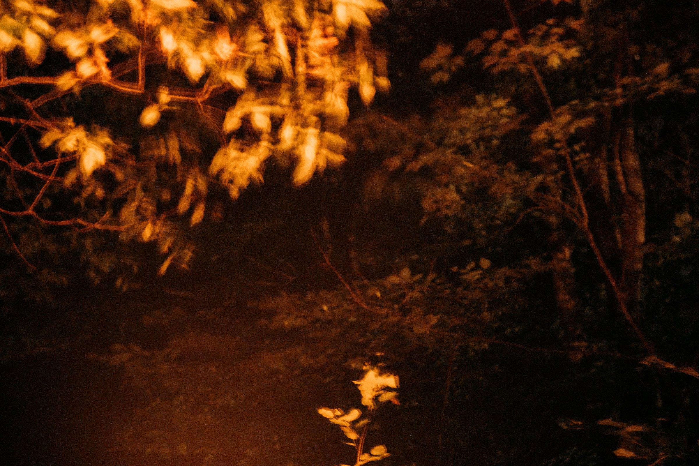"""Fire"", photograph by Melanie Gordon"