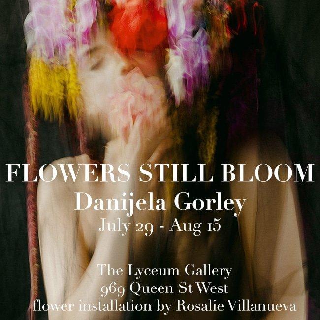 Flowers Still Bloom by Danijela Gorley